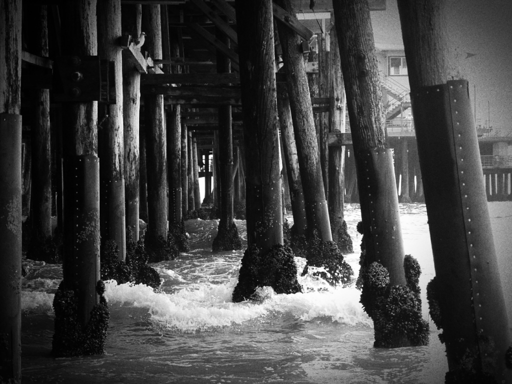 beneath santa monica pier